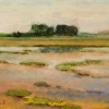 Marsh Eastern Shore 2