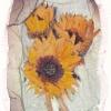 Sunflower Image Lift